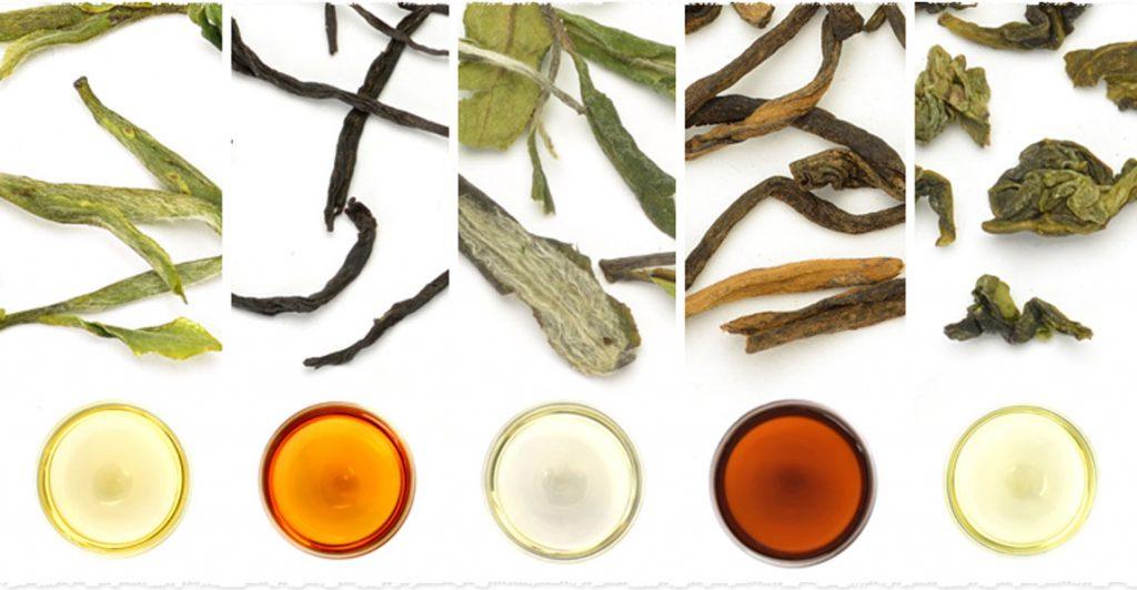 فروش انواع چای شمال