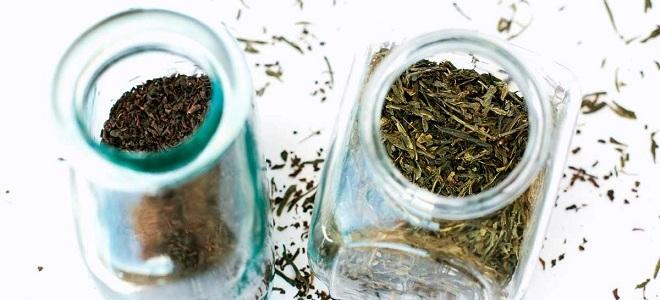 چای شمال لاهیجان