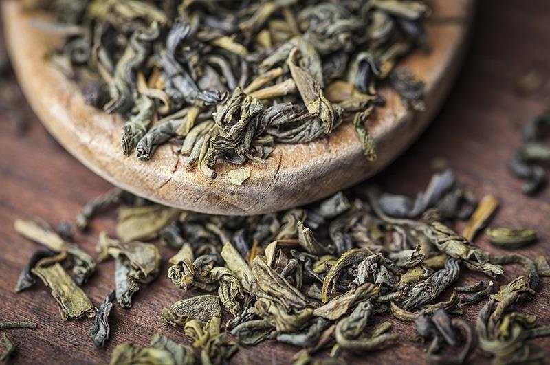 تولید چای سبز