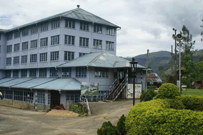 فروش چای شمال از درب کارخانه