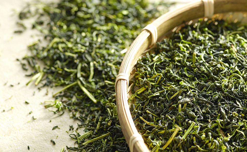 فروش بهترین چای سبز شمال ایران