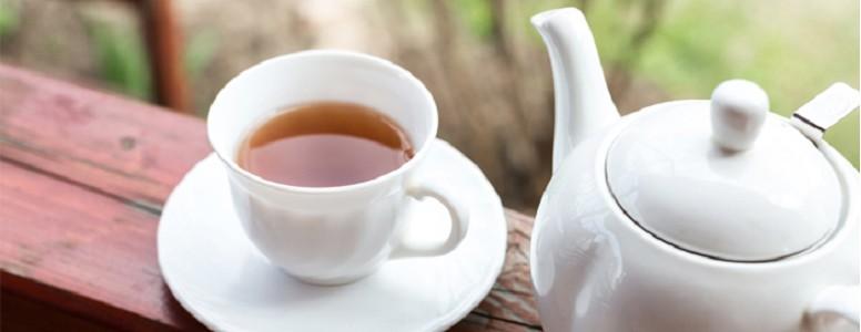 قیمت فروش چای شمال