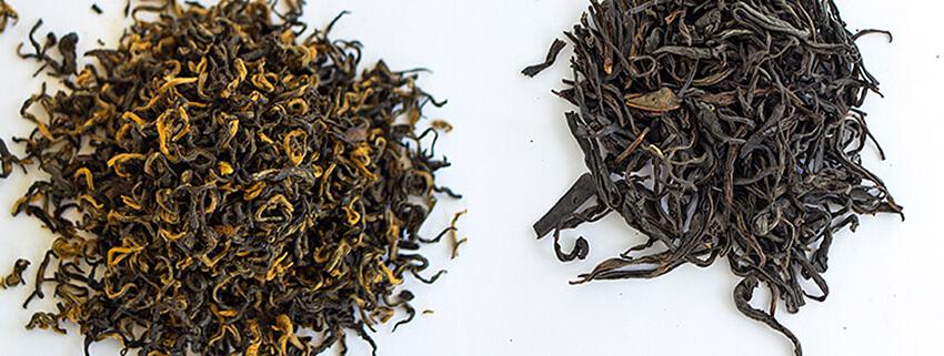 فروش عمده چای بهاره
