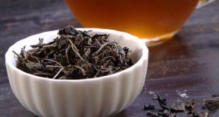 فروش چای شمال