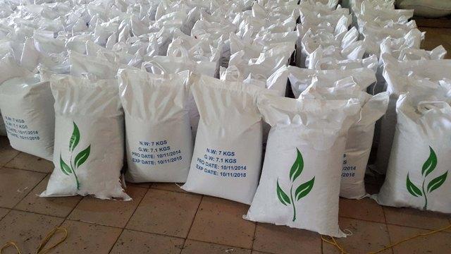 صادرات چای سبز لاهیجان