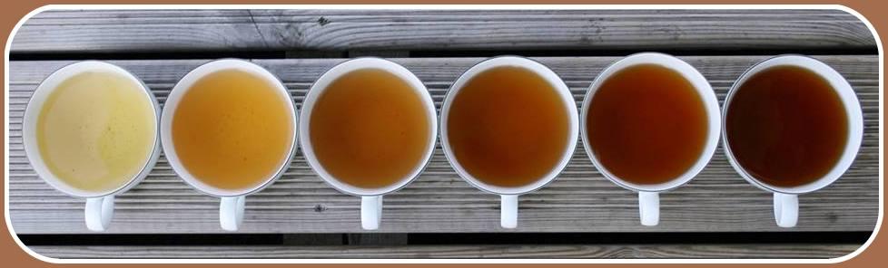 فروشگاه چای لاهیجان