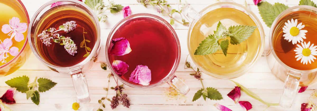 خرید انواع چای ارگانیک و سنتی