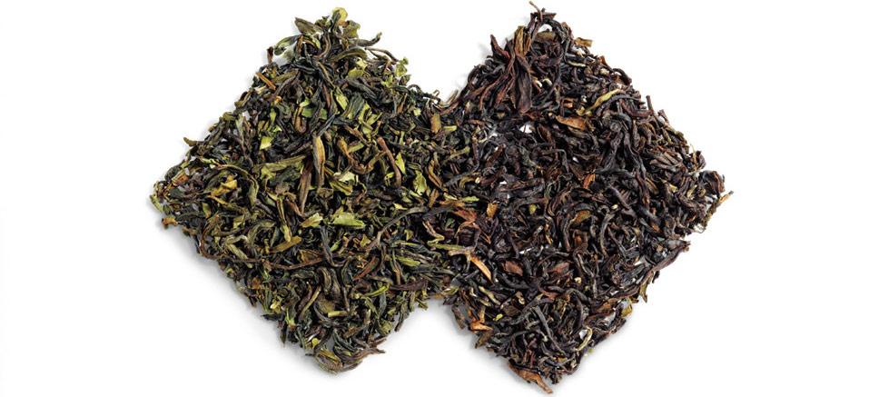 خرید چای سیاه و سبز ایرانی
