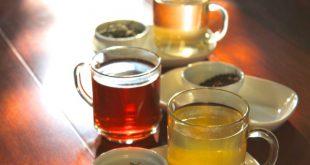 قیمت چای لاهیجان