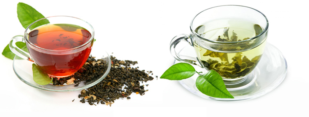 انواع چای گیلان جهت خرید