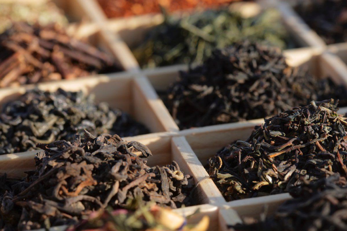 خرید چای شکسته صادراتی