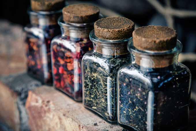 تنوع چای ایرانی در مرکز خرید چای شمال