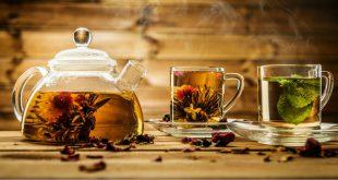 نمایندگی چای