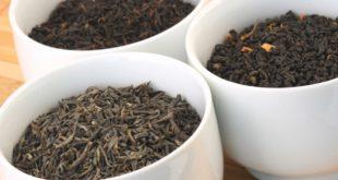 قیمت چای صادراتی