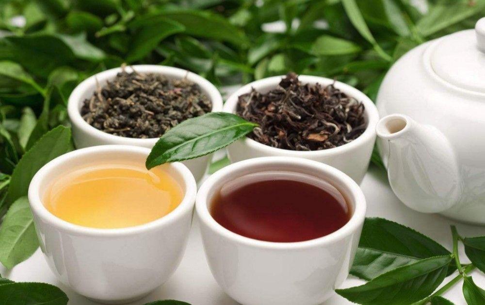 مرکز فروش چای ایرانی