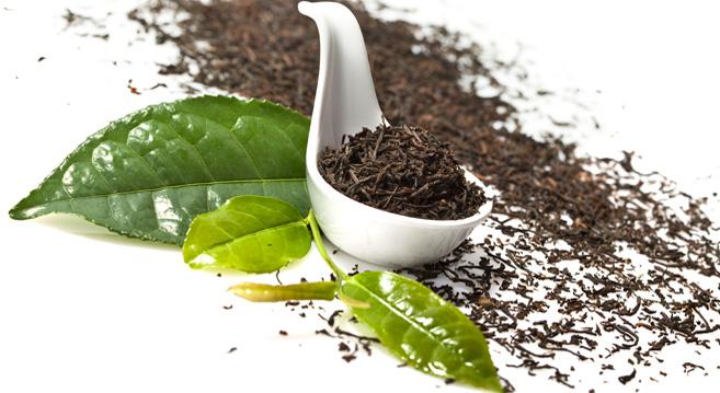 فروش چای سنتی تضمینی