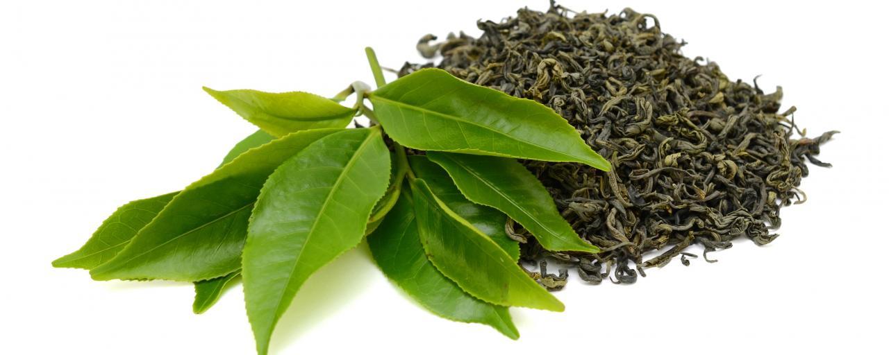 قیمت چای سبز ایران