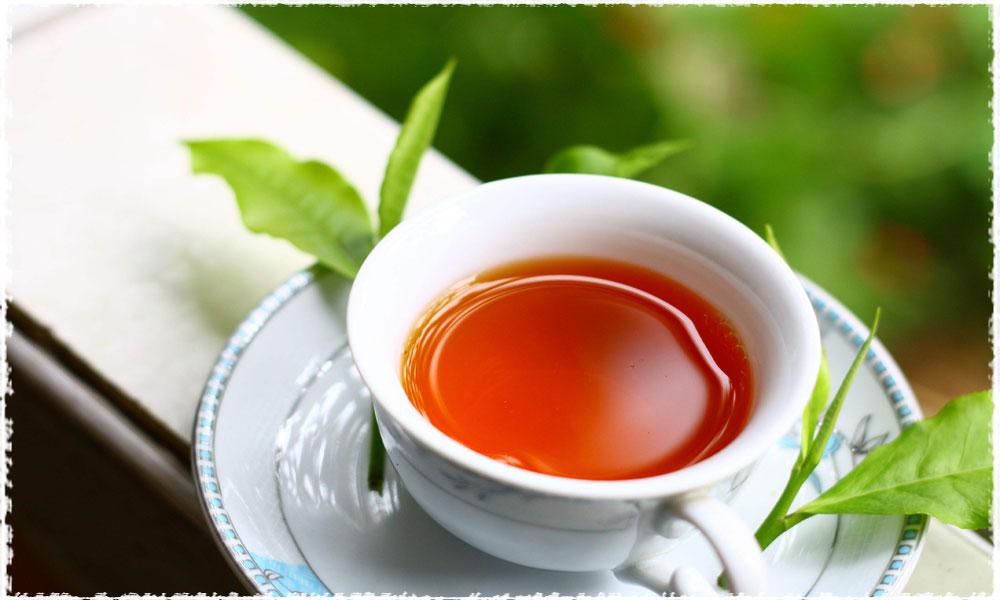 صادرات چای شکسته ایرانی