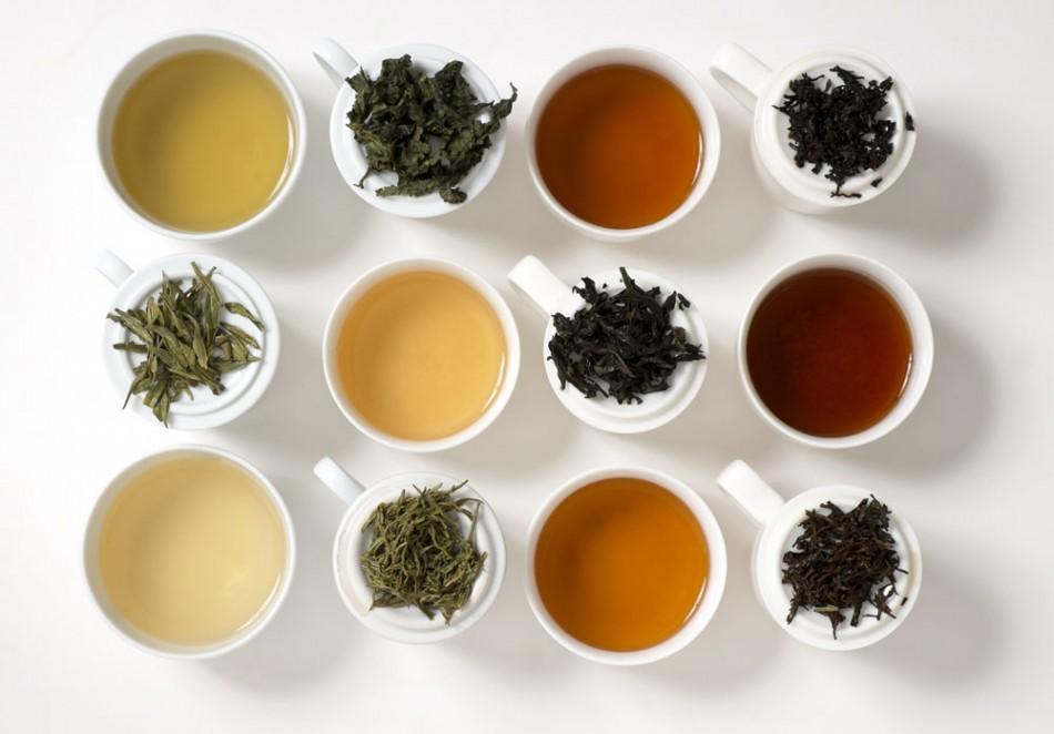 نمایندگی فروش انواع چای شمال