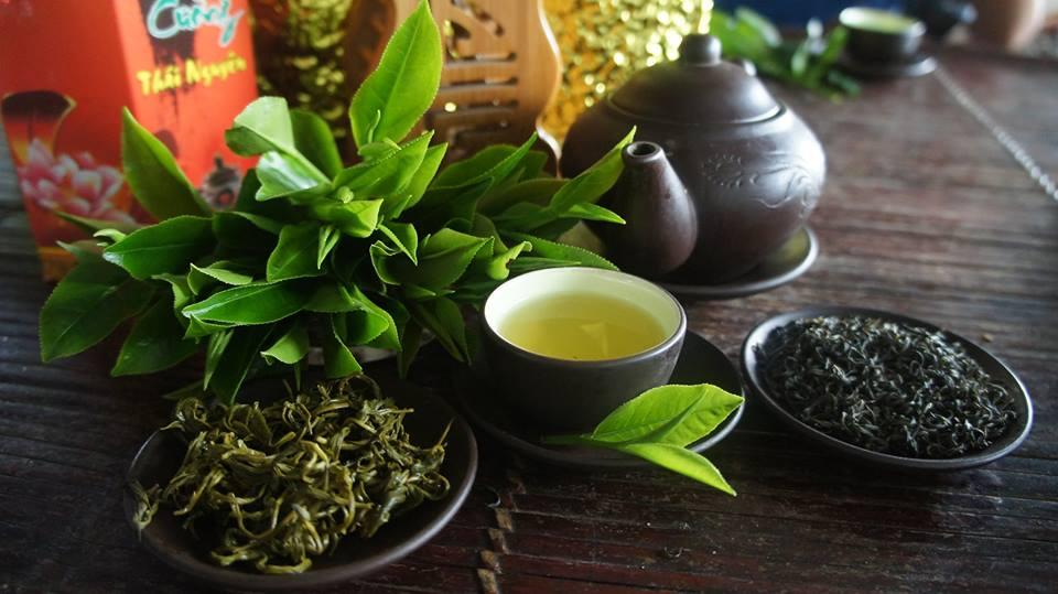 قیمت خرید انواع چای بهاره گیلان