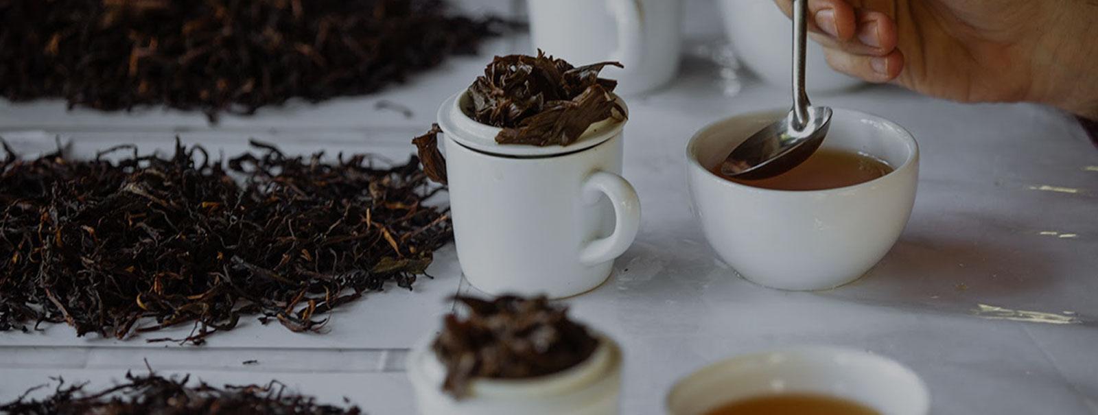 صادرات چای شمال ایران