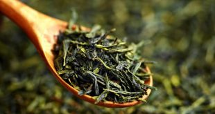 فروش چای سبز قلم