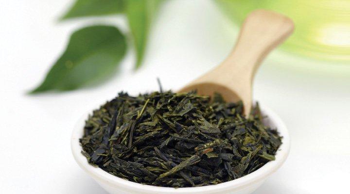 نمایندگی فروش چای سبز لاهیجان