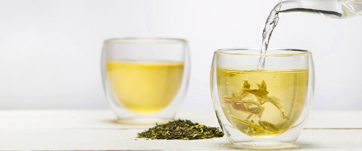 نمایندگی چای سبز لاهیجان