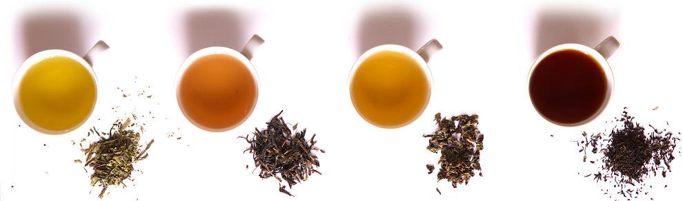 فروش جزئی چای شمال ایران