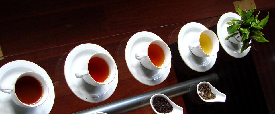 خرید اینترنتی چای