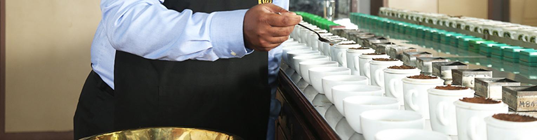 فروش چای سیاه لاهیجان