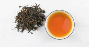 چای ارگانیک شمال