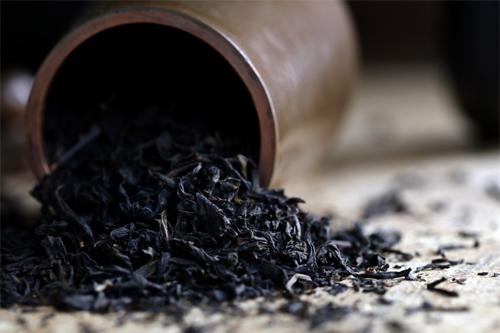 قیمت خرید و فروش چای لاهیجان