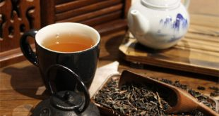 چای سرگل شمال