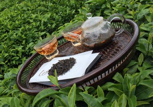 صادرات انواع چای سیاه و سبز ایرانی