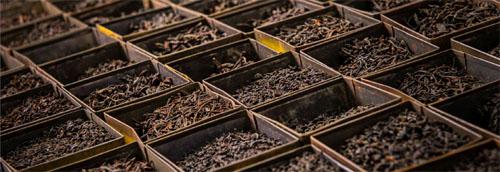 صادرات چای ایرانی افغانستان