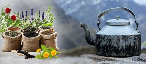 خزید چای سرگل و چای ممتاز شمال ایرانی