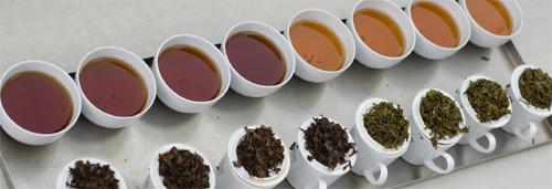 خرید چای صادراتی